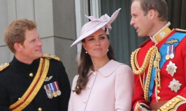 Kate, William et Harry recrutent sur LinkedIn