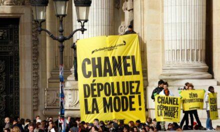 Greenpeace salue des «avancées majeures» en matière de mode detox