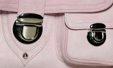 Chanel s'offre la tannerie espagnole Colomer Leather