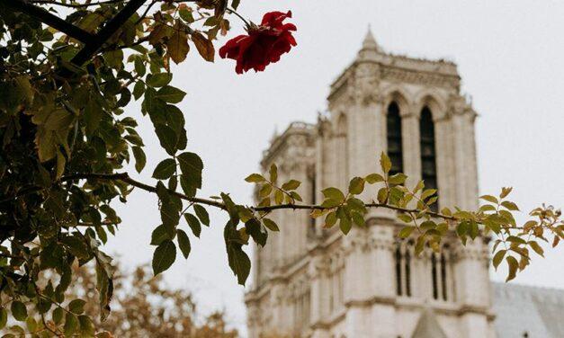 Notre-Dame : Kering et LVMH se mobilisent pour financer la reconstruction