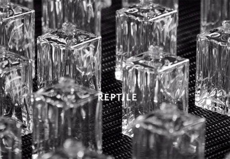 Hedi Slimane relance la parfumerie Celine